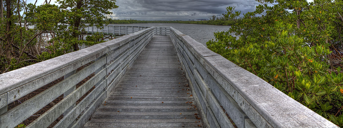 Walk along the lake and enjoy the beauty of South Florida